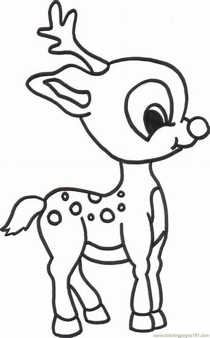 Deer Coloring Pages Colouring Printable Cartoon Sheets