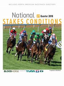 Thoroughbred Reports  News  Sire Lists  Blogs  Video  Pedigree Analysis