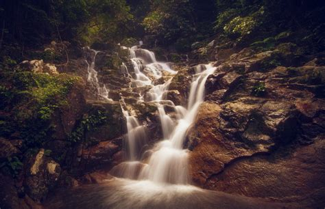 green leafed trees  waterfalls  stock photo