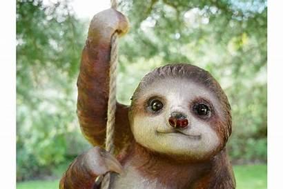 Sloth Garden Hanging Steve Tree Sage 1152