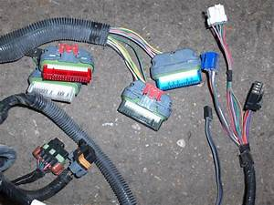 97 Camaro Z28 Lt1 4l60e Engine Wire Harness