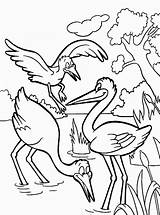Coloring Stork Pages Storks Birds Printable Colors Coloring2print Worksheets Recommended sketch template