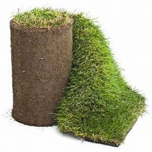 Rouleau Gazon Naturel : covergarden toute l 39 actualit du gazon naturel et du gazon ~ Melissatoandfro.com Idées de Décoration