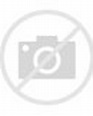 Actor Christopher Jackson attends the opening night ...