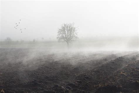 nebel stimmung landschaft kostenloses foto auf pixabay