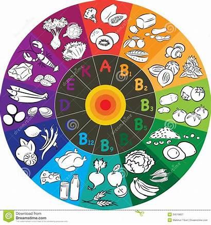 Vitamin Wheel Clipart Illustration Groups Vector Colored