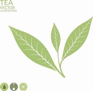 Tea Leaf Clip Art – 101 Clip Art