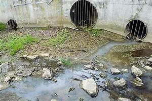 Abrechnung Wasser Und Abwasser : mtk abwasser ~ Themetempest.com Abrechnung