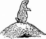 Prairie Dog Coloring Pages Animals Burrow sketch template