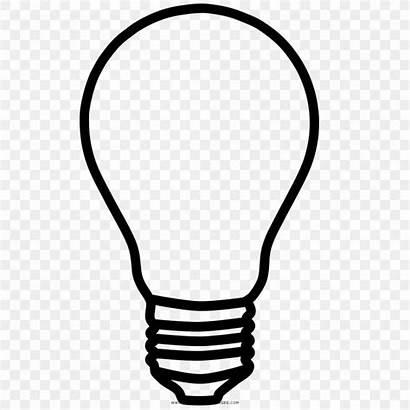 Bulb Sketch Drawing Draw Vector