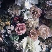 flowers hipster lo...Vintage Flowers Tumblr