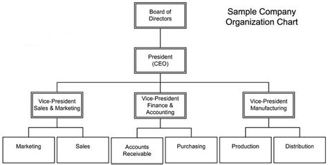 company structure chart template organizational