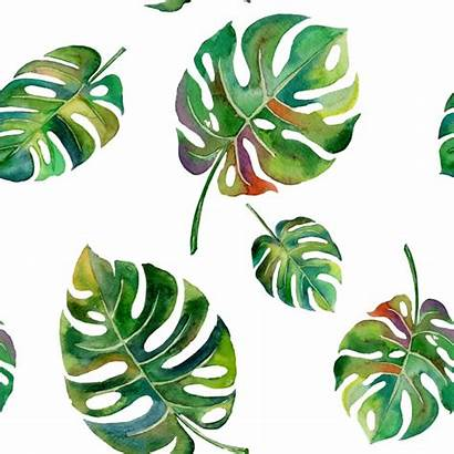 Leaves Vector Pattern Tropical Island Watercolor Palm