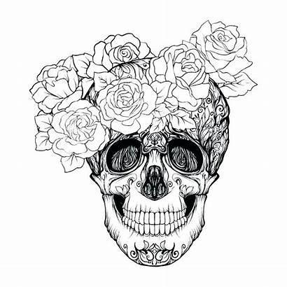 Tattoo Coloring Rose Skull Roses Adult Adults