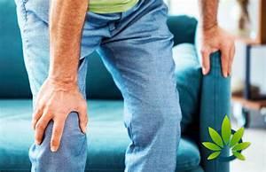 Cbd Oil For Knee Pain  Symptoms  Causes  Diagnosis