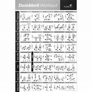 Printable Dumbbell Exercises Diagrams