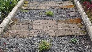 Rasen Vertikutieren Ja Oder Nein : pflegeleichte g rten statt steinw ste oder rasen ~ Buech-reservation.com Haus und Dekorationen