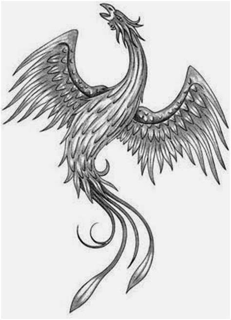 Tattoos Book: +2510 FREE Printable Tattoo Stencils: Phoenix tattoo stencils