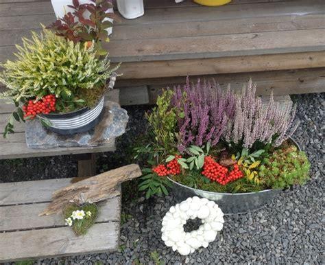 Herbst Winterdeko Fensterbank by Blommor Tr 228 Dg 229 Rd Och Rabatter Hemma Hos Bex