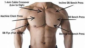 Chest Exercises For Every Part Of Your Chest