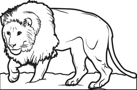 printable male lion coloring page  kids supplyme