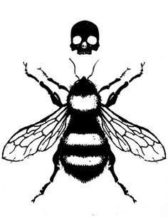 25 Best Honey Bee images | Bee, Bee tattoo, Bee images