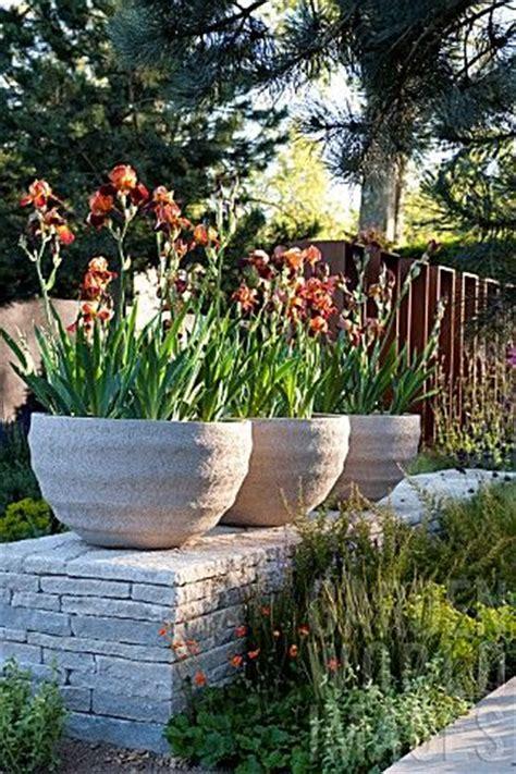 1000 ideas about large pots on large plant