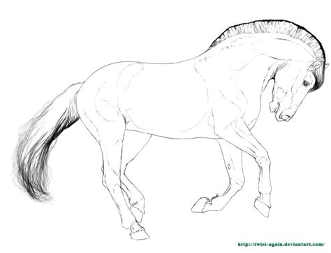Fjord Drawing by Fjord Horse Line Art Sketch Coloring Page