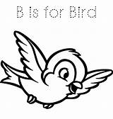 Bird Coloring Drawing Snow Animals Forest Animal Birds Clipart Flying Printable Cliparts Simple Clip Getdrawings Disegni Malvorlagen Primavera Rocks Colorare sketch template