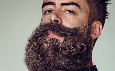 shaver ads show funny images men beards real animals