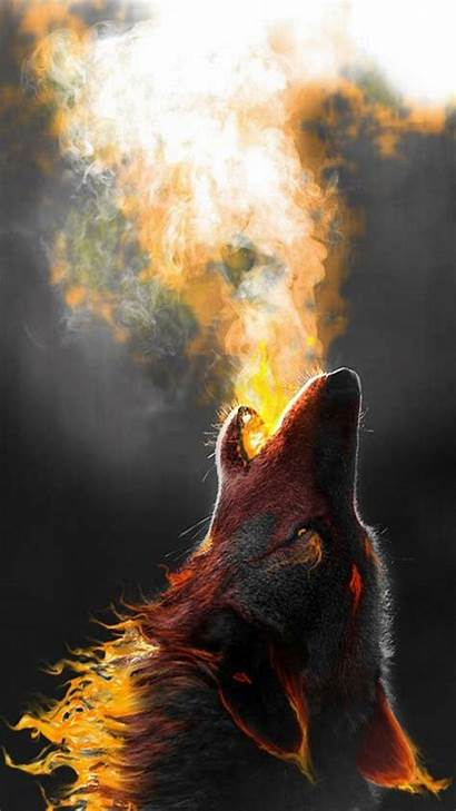Wolf Phone Howling Iphone Wallpapers