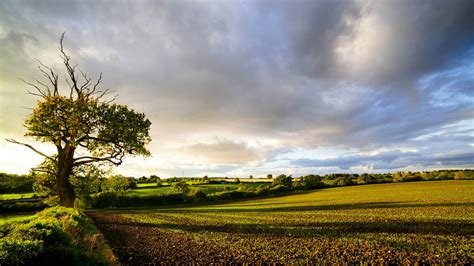 Awesome Countryside Wallpaper  1920x1080 #26737