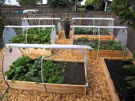 backyard vegetable garden design ideas  vegetable garden