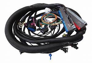 24x Tpi Engine Harness - 4ft Stand Alone