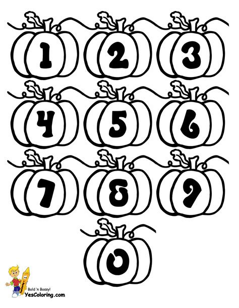 plump pumpkin alphabets  pumpkins thanksgiving