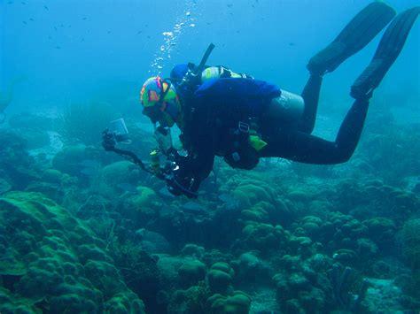 Scuba Dive Trips - scuba dive trips swim and scuba islandswim and