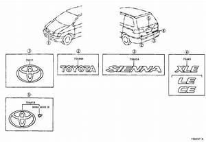 Toyota Sienna Hatch Emblem  Plate  Back Door Name  No 2