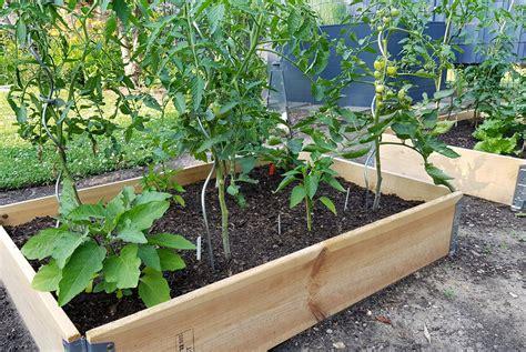 Gemüsegartenmitpalettenrahmengartenimmai Grüneliebe