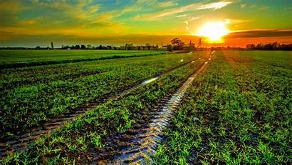 Field Track Wallpapers Sunset Desktop Landscape Mark