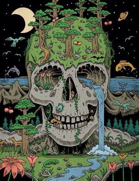 Illustration Animals Trippy Psychedelic Skull Nature