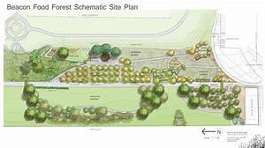 Seattle plans for a city park with edible plants - free ...