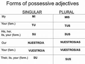 Spanish possessive adjectives - Long form and short form ...