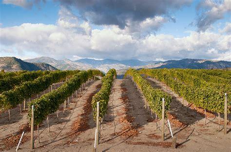 washington state wines diversity vineyards vineyard explore wine getty magazine