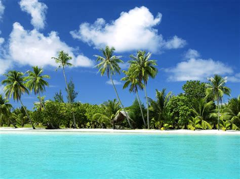 tourism tropical beaches