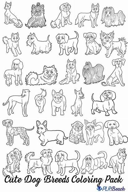 Dog Coloring Breeds Commercial Pack Dogs Breed