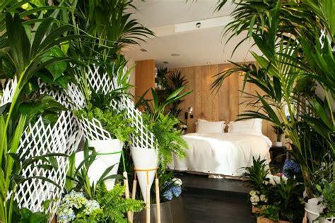 les plantes vertes dans la chambre annikapanika