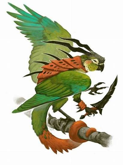 Conure Cheeked Bird Drawing Parrot Society6 Tattoo