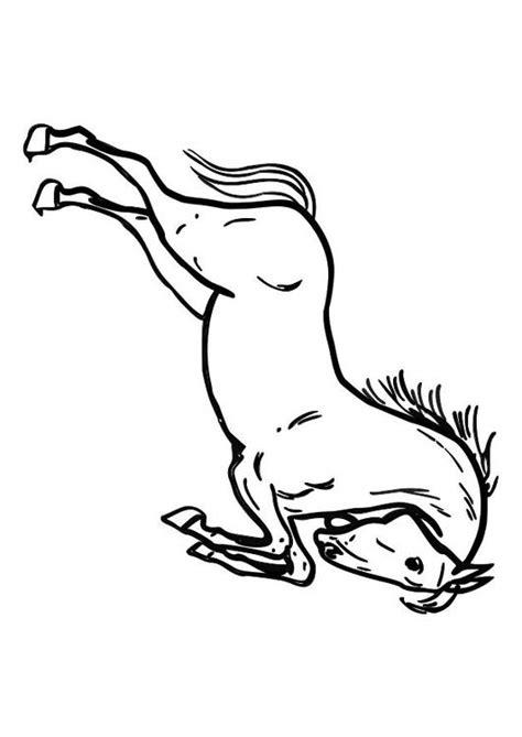 Springend Paard Kleurplaat by Kleurplaat Springend Paard Afb 10362