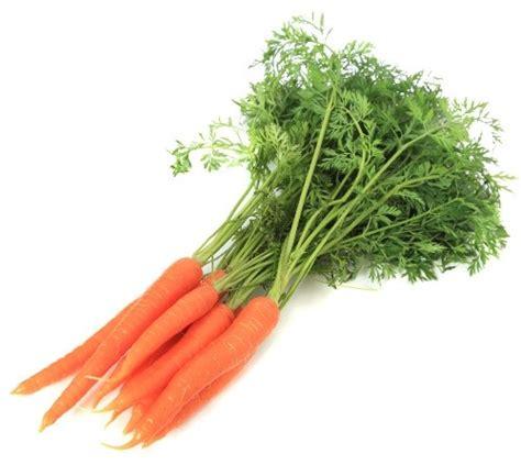 cuisiner fanes de carottes carotte fane légumes pau le fruitier de lée