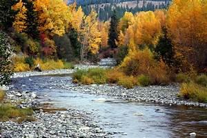Cascade Mountain Creeks Washington Emerald Water Anglers